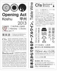 2013 koshu X5
